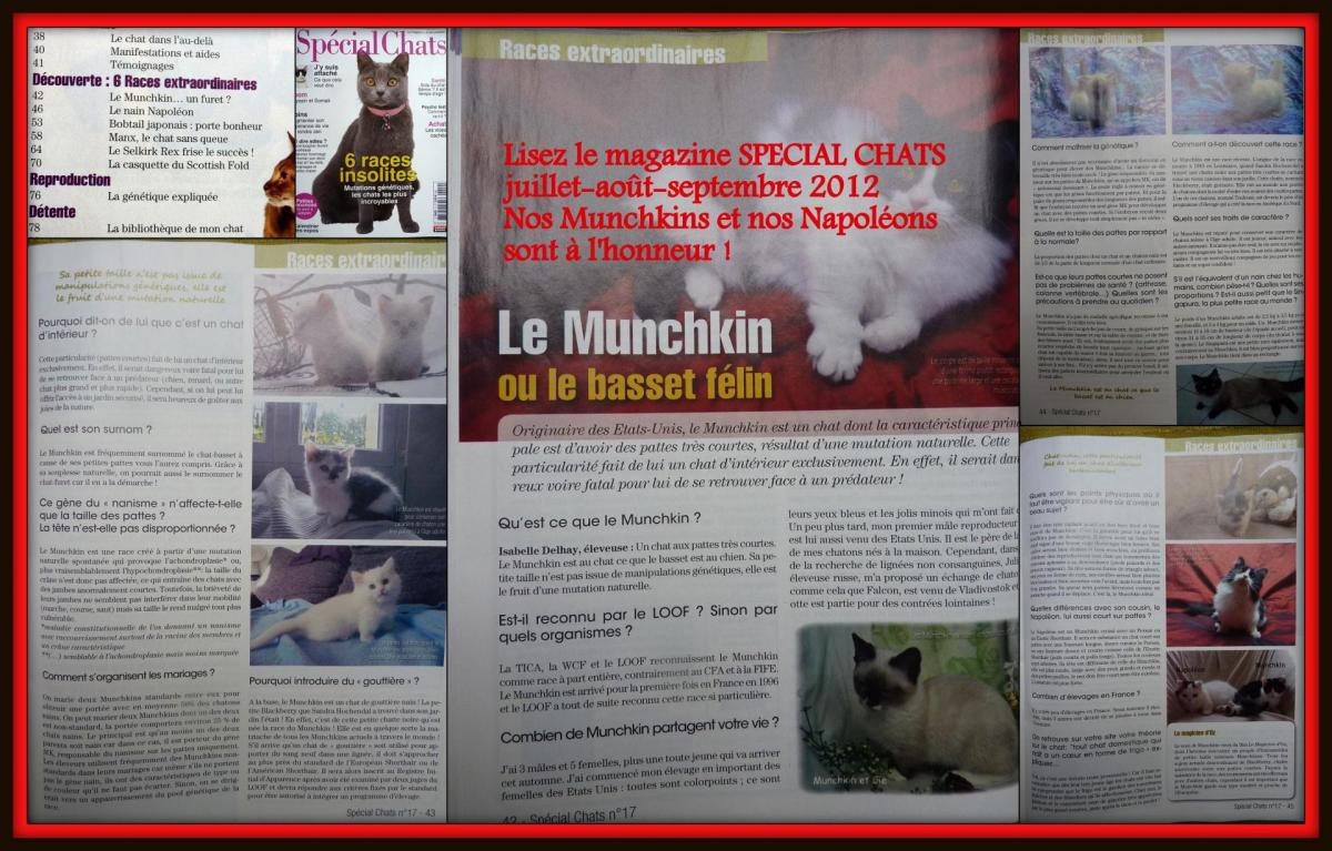 Article special chats 2012a